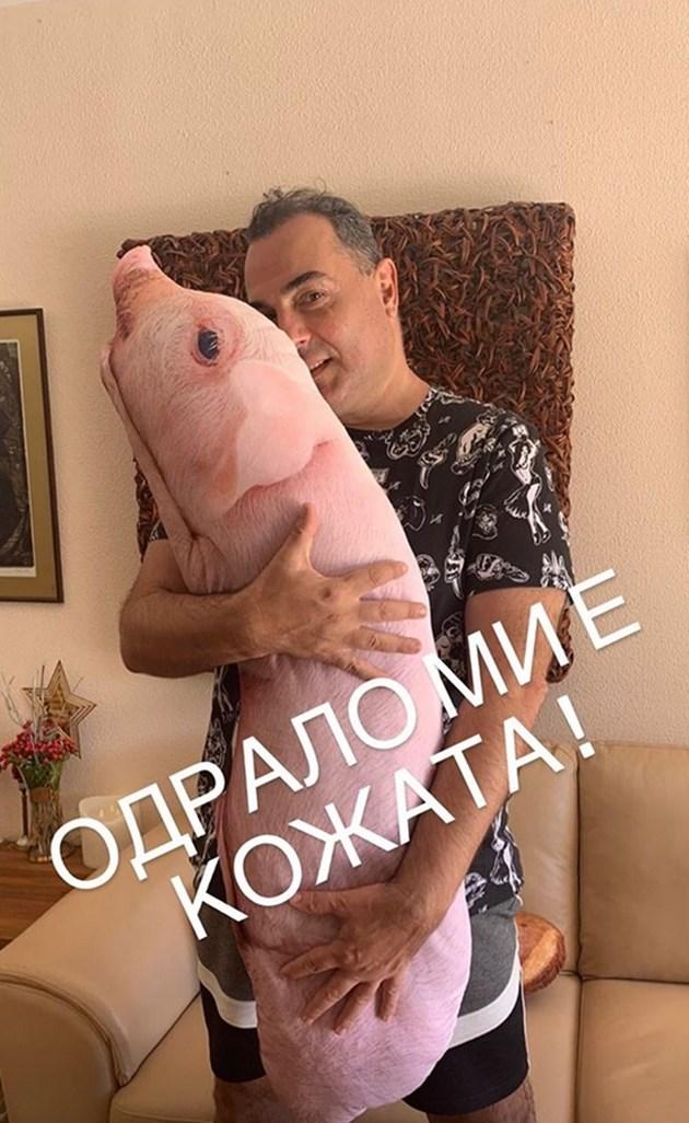 Драго Чая гушна розово прасе