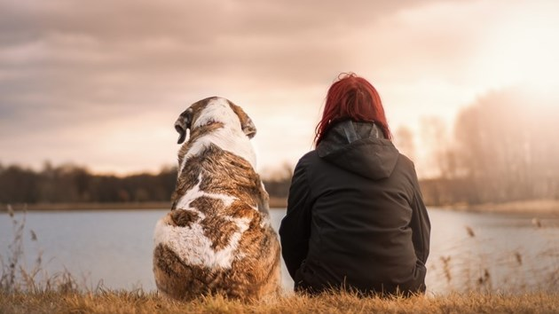 Дебелите хора отглеждат кучетас наднорменотегло