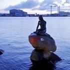 """""""Расистка риба"""" надраскаха върху статуята на Малката русалка"""