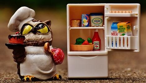 Как да видим сметката на бактериите в хладилника