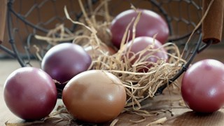 Хитрини за здрави великденски яйца
