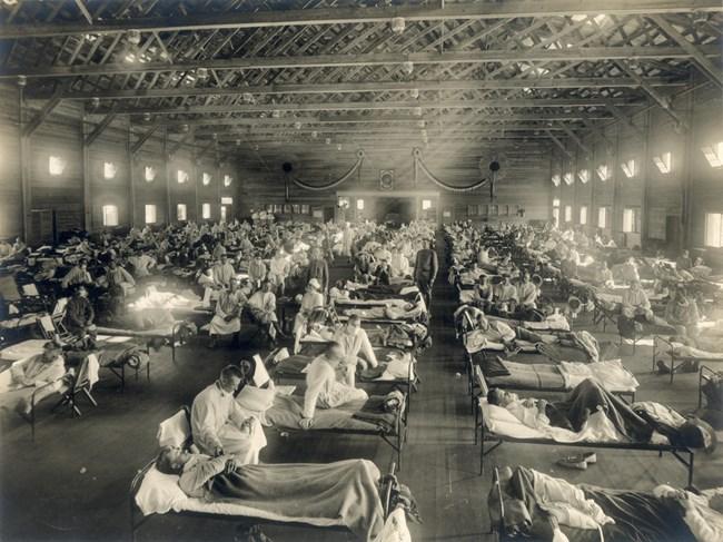 Пандемията от испански грип само в САЩ взима между 500 000 и 675 000 жертви, 28% от населението се заразява.