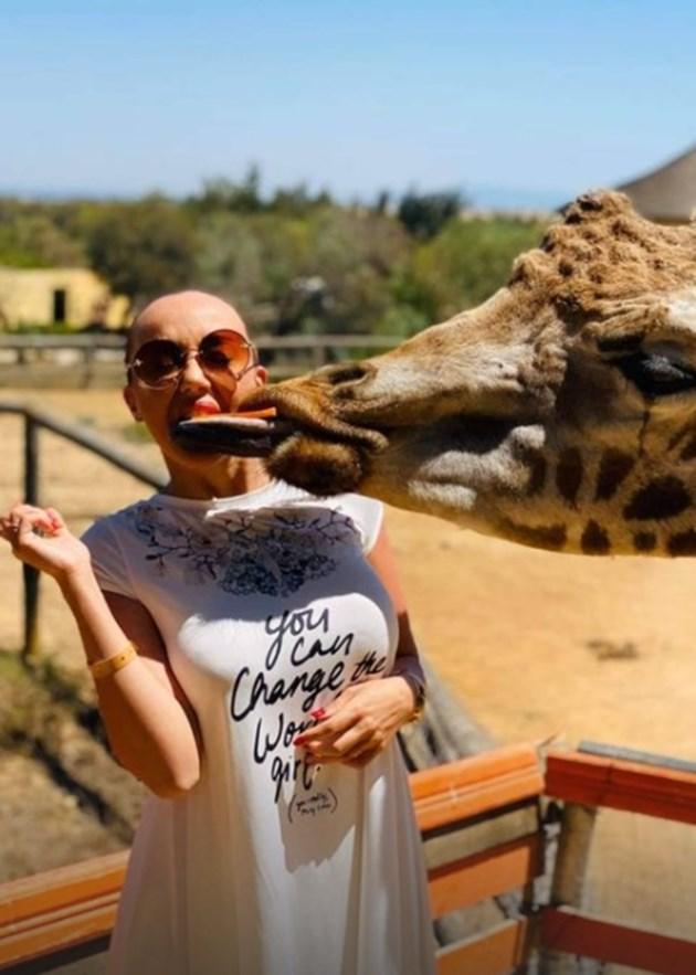 Мира в целувка с жираф