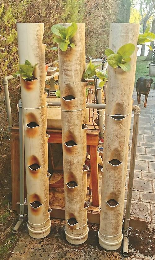 Вертикална PVC градина