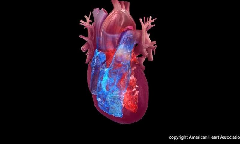 СНИМКА: Американската асоциация за изследване на сърцето