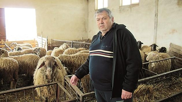 Животновъдът Стефан Найденов от с. Мрамор, Софийско