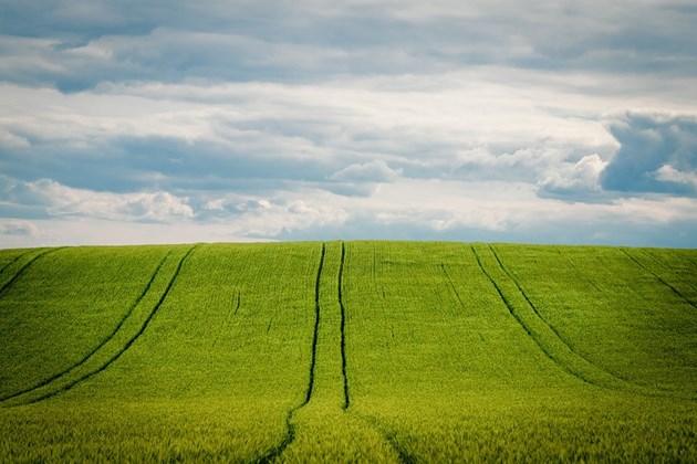 Земеделската земя се е увеличила с 9 на сто за десет години