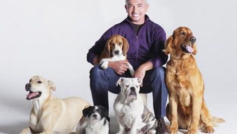 Съветите на Сизър Милан - говорещият с кучета