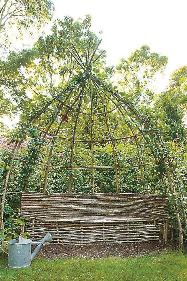 По същата формула можем да експериментираме и творим красиви местенца в двора и с овощни дръвчета или лози.