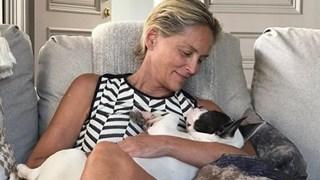 Шарън Стоун по-щастлива от всякога на 60 (Снимки)