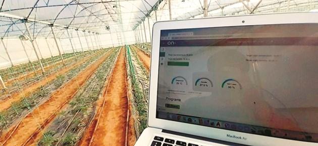 Цялостно решение за автоматизирано капково напояване, торовнасяне, контрола на климата и мониторинг в българско стопанство е разработила компания Ондо, член на агрохъба. Източник: agrohub.bg