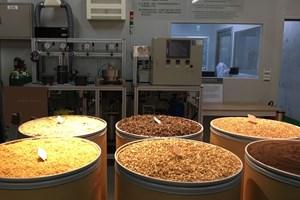Кафето, което се произвежда в Тайван, освен за пиене, се използва и за производството на шампоани и козметика