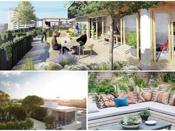 5 съвета за неустоима градина на покрива