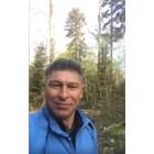 Бала тича в гората