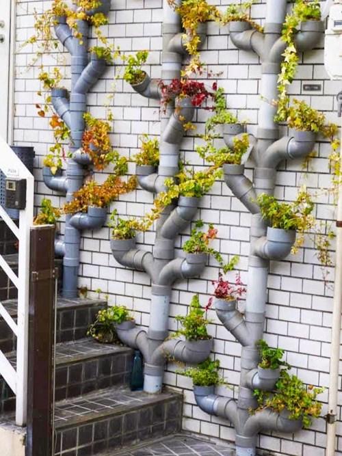 Бърза градина за вилата