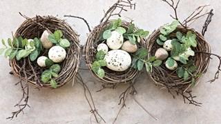 Яйцата - полезни или вредни за здравето