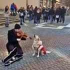 Кучка пее с Моцарт