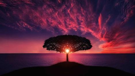 Слънце в Скорпион – нов ред в отношенията