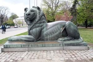 Пред Паметника на Незнайния воин в София