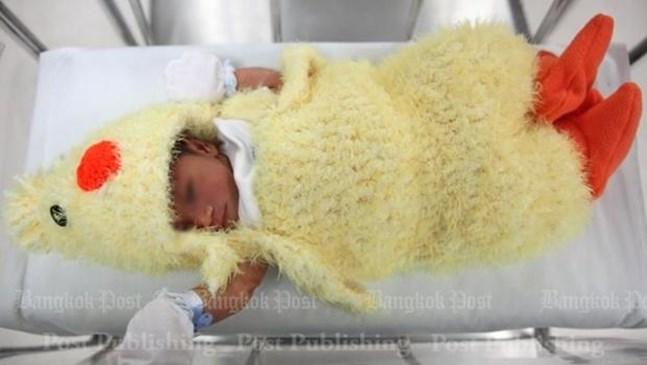Болница облича новородените като пилета (снимки)