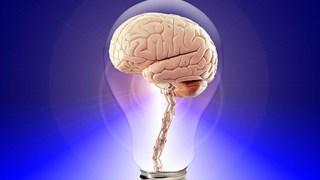 Седем ранни сигнала за тумор в мозъка