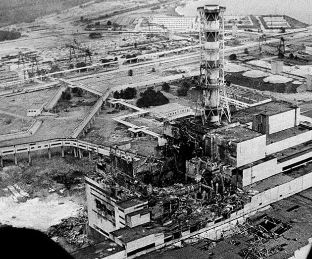 Плесенни гъби поглъщат радиацията на Чернобил?