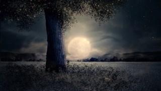 Пълнолуние в Рак и лунно затъмнение – баланс между важното и излишното