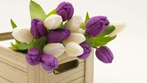 Какви цветя да изберем за подарък за различните именици на Цветница