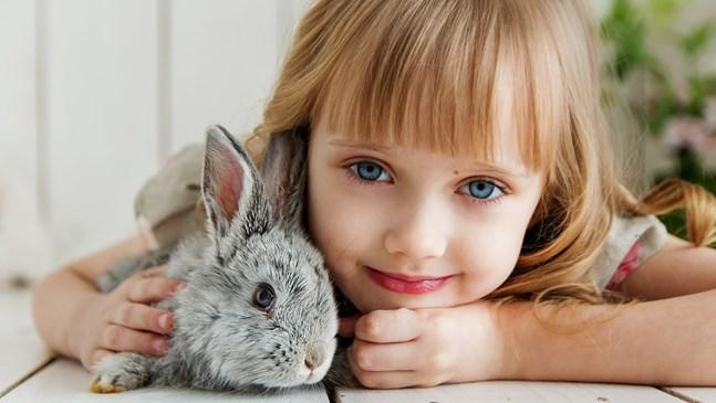 Притча за силата на любовта между деца и животни